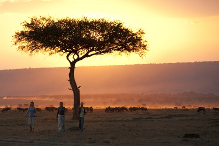 Sillouette of people against sunset sky in Kenya photo