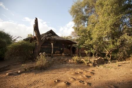 Samburu National Reserve in Kenya Reklamní fotografie