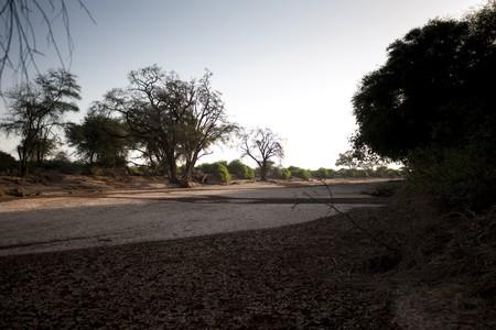 Samburu National Reserve in Kenya Banco de Imagens