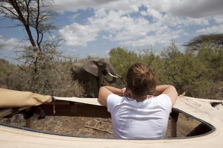 levit: Girl in safari truck looking at elephant