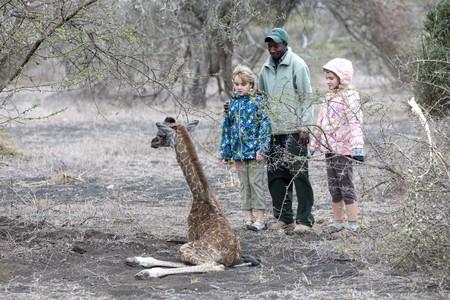 guia turistico: Ni�as con gu�a tur�stico y la jirafa