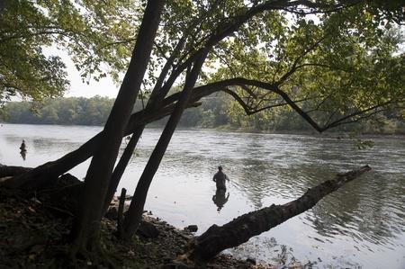 Voler de pêche dans le lac Taneycomo Branson, Missouri. Banque d'images - 9259995