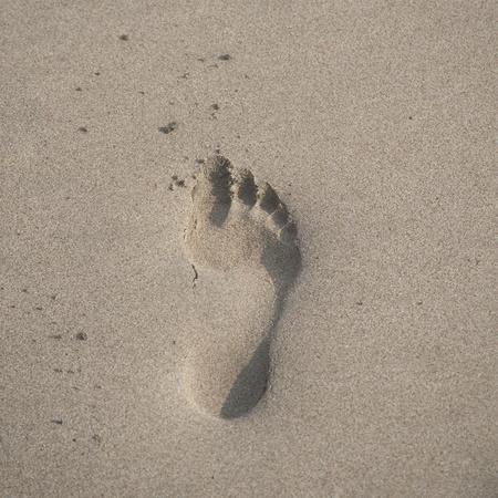 huellas pies: Huella en la arena a lo largo de la costa en Costa Rica