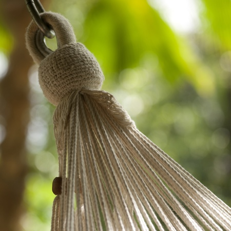 End cords of a hanging hammock in Costa Rica