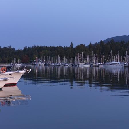 dawns: Boats at the marina in Vancouver, British Columbia