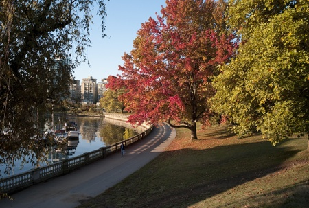 Fall foliage in Stanley Park in Vancouver, British Columbia, Canada photo