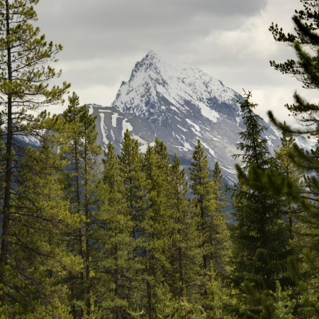 malign: Leah Peak, Malign Lake, Jasper National Park, Alberta, Canada