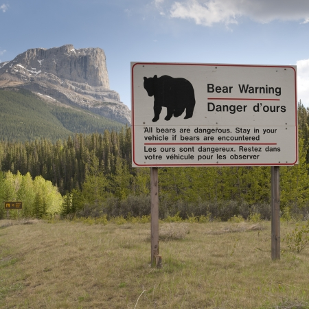 Bear Warning sign, Jasper National Park, Alberta, Canada Stock Photo - 14242443