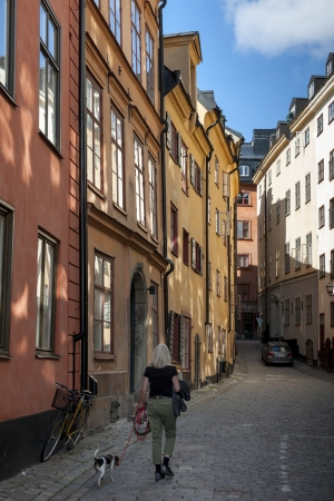 Woman walking with a dog on a street, Gamla Stan, Stockholm, Sweden
