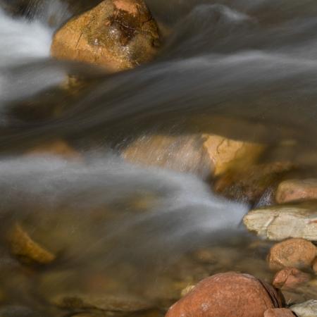 River, Zion National Park, Utah, USA photo