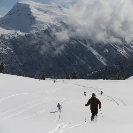 whistler: Tourists skiing, Whistler, British Columbia, Canada