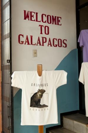 Souvenir t-shirt, Puerto Baquerizo Moreno, San Cristobal Island, Galapagos Islands, Ecuador Imagens - 15946288