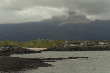 tourist feature: Tourists on an island, Punta Espinoza, Fernandina Island, Galapagos Islands, Ecuador