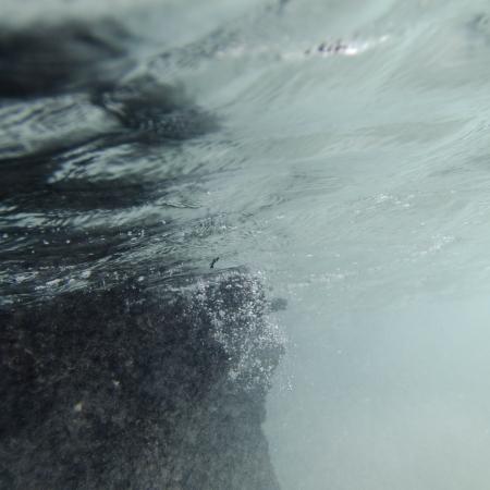 Bubbles underwater, Puerto Egas, Santiago Island, Galapagos Islands, Ecuador Фото со стока