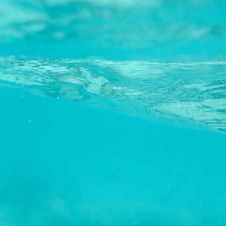 levit: Underwater, Gardner Bay, Espanola Island, Galapagos Islands, Ecuador Stock Photo