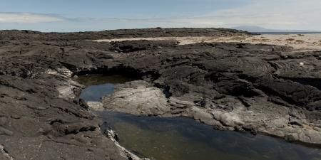 volcanic landscape: Volcanic landscape, Punta Espinoza, Fernandina Island, Galapagos Islands, Ecuador