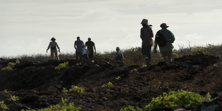 Hikers on a hill, Prince Philip's Steps, Tower Island, Darwin Bay, Genovesa Island, Galapagos Islands, Ecuador Stock Photo - 16708882