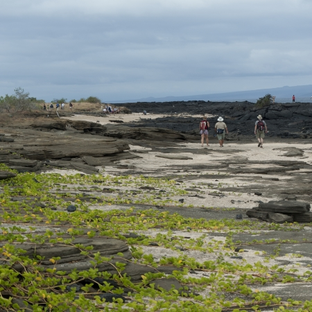 Tourists near a volcano, Puerto Egas, Santiago Island, Galapagos Islands, Ecuador Stock Photo - 17227729