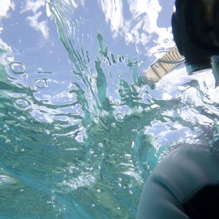 Scuba diver swimming underwater, Gardner Bay, Espanola Island, Galapagos Islands, Ecuador Banco de Imagens