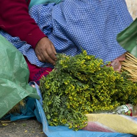 cusco region: Vendor venta de hierbas en un puesto del mercado, Valle Sagrado, Cusco, Per� Foto de archivo