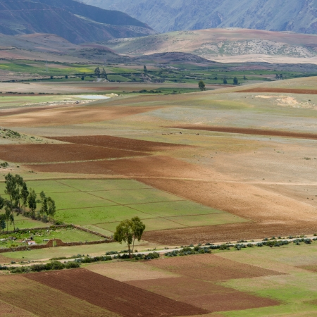 sacred valley of the incas: Agricultural field in Sacred Valley, Cusco Region, Peru Stock Photo