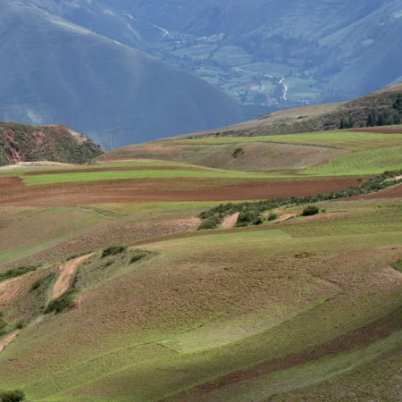 placidness: Agricultural field in Sacred Valley, Cusco Region, Peru Stock Photo