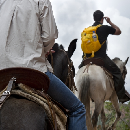 vacationer: Tourists riding on horses, Sacred Valley, Cusco Region, Peru Stock Photo