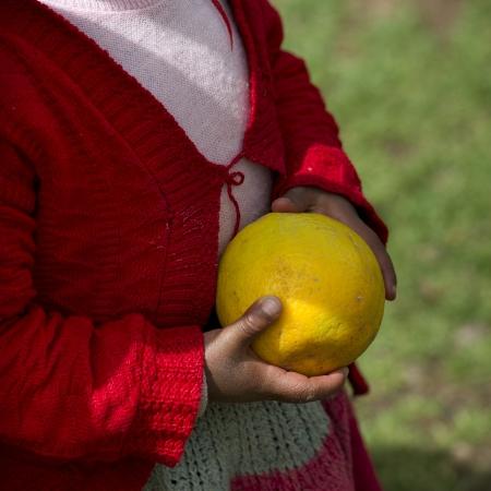 peruvian ethnicity: Ver la secci�n media de una muchacha que sostiene un lim�n en una escuela, la Escuela Primaria Chumpepoke, Valle Sagrado, Cusco, Per�