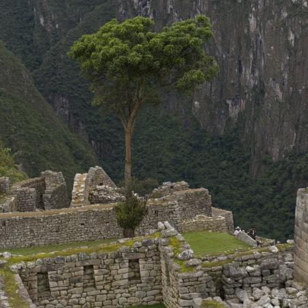placidness: Ruins of The Lost City of The Incas, Machu Picchu, Cusco Region, Peru Stock Photo