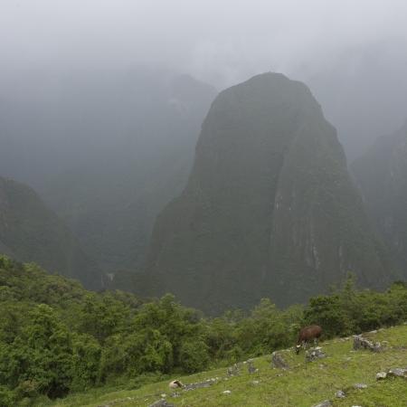 placidness: Mountain covered with fog, Machu Picchu, Cusco Region, Peru