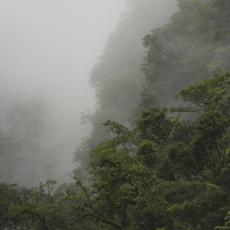 placidness: Fog in Sacred Valley, Cusco Region, Peru