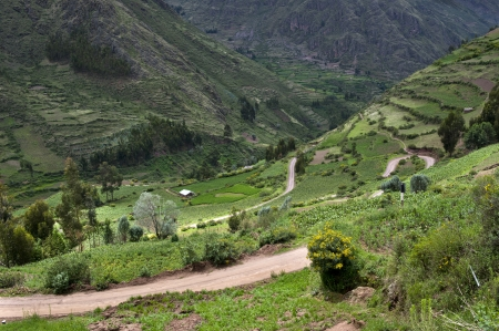 sacred valley: Agricultural field in Sacred Valley, Cusco Region, Peru Stock Photo