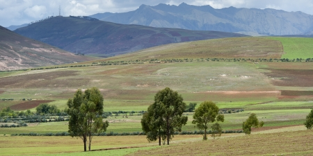 tranquilly: Agricultural field in Sacred Valley, Cusco Region, Peru Stock Photo