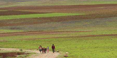 placidness: Agricultural field in a valley, Sacred Valley, Cusco Region, Peru Stock Photo