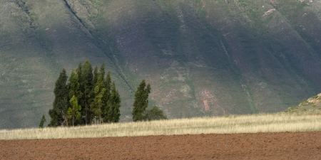 tranquilly: Agricultural field in a valley, Sacred Valley, Cusco Region, Peru Stock Photo
