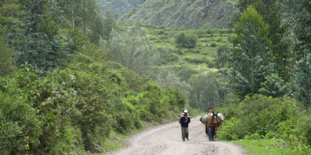 People walking with a donkey on a dirt road, Sacred Valley, Cusco Region, Peru