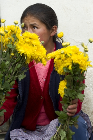mercado central: Woman selling daisies at Mercado Central, Cuzco, Peru Editorial