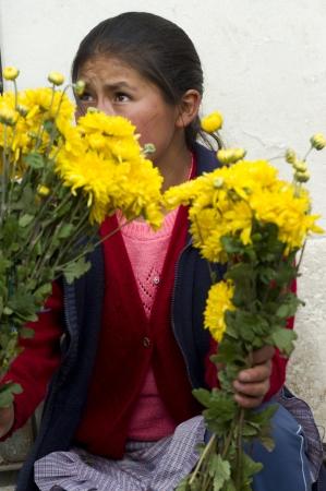 cusco province: Woman selling daisies at Mercado Central, Cuzco, Peru Editorial