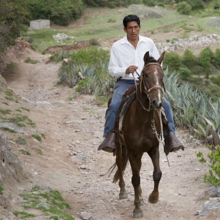 quietude: Homem que monta um cavalo, Vale Sagrado, Cusco Region, Peru