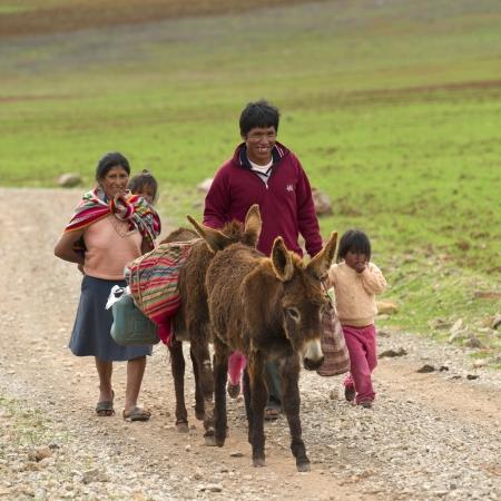 vaderlijk: Familie wandelen in een veld met muilezels, Heilige Vallei, Cusco Gewest, Peru Redactioneel