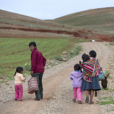 animal related: Family walking in a field with mule, Sacred Valley, Cusco Region, Peru
