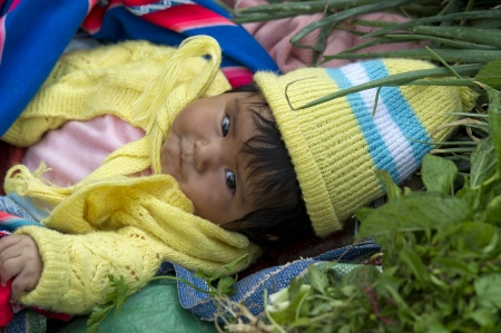 Close-up of a baby lying at a market stall at Sunday market, Pisac, Cuzco, Peru