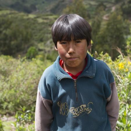 Portret van een Quechua Indische jongen op Chumpepoke Primary School, Poques, Heilige Vallei, Cusco Gewest, Peru