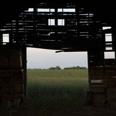 Abandoned barn in a field, Manitoba, Canada photo