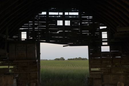 Abandoned barn in a prairie field, Manitoba, Canada photo
