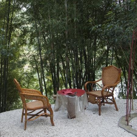 Chairs on a patio between bamboo groves, Yangshuo, Guilin, Guangxi Province, China Banco de Imagens
