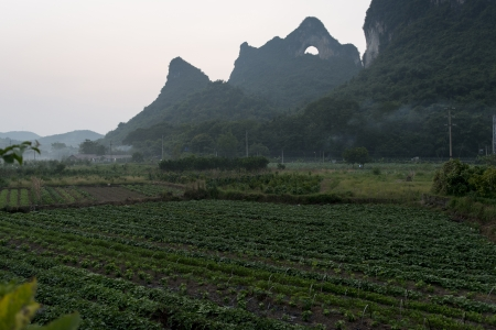 placidness: Agricultural field with Moon Hill in the background, Yangshuo, Guilin, Guangxi Province, China