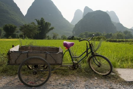 placidness: Bicycle cart in a field, Yangshuo, Guilin, Guangxi Province, China Stock Photo