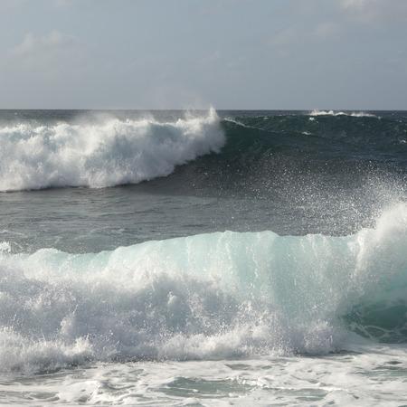 north shore: Waves in the ocean, Haleiwa, North Shore, Oahu, Hawaii, USA
