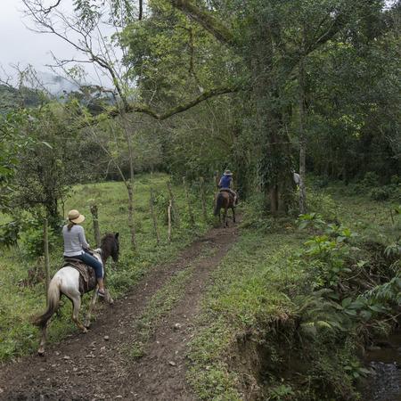 parapente: Turistas femeninos que disfrutan de paseos a caballo en el bosque, Finca El Cisne, Honduras